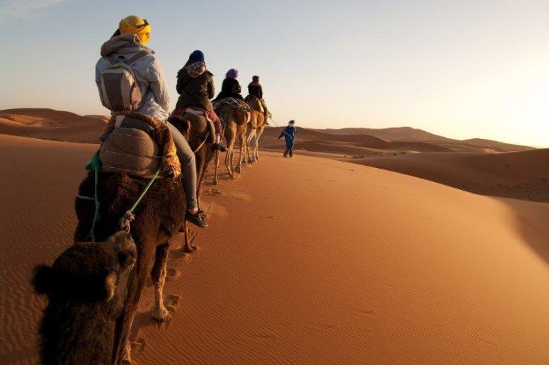desierto-merzouga-camellos