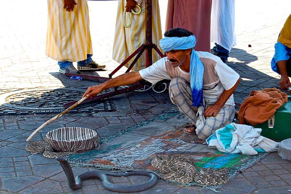 marrakech-encantador-serpientes